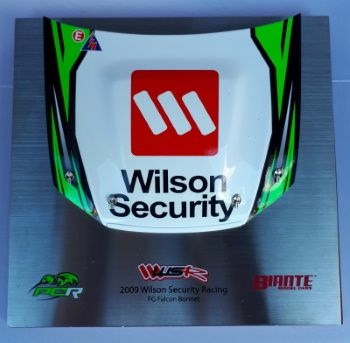 Signature Bonnet by Biante Model Cars.  1:10 scale model of the 2009 Wilson Security Racing FG Falco.